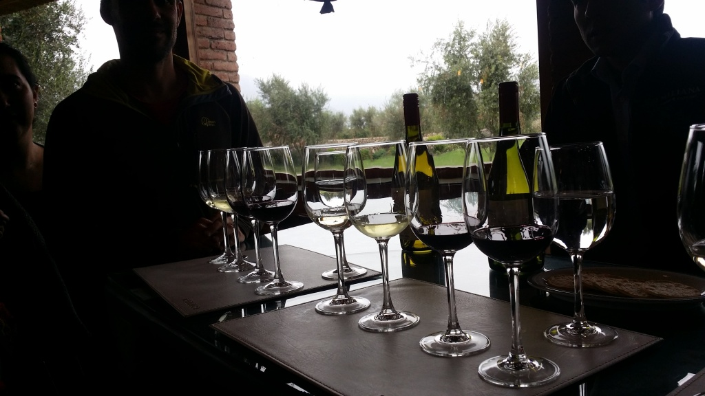 Wine tasting with friends at Emiliana Winery near Casablanca.  Photo by Nate
