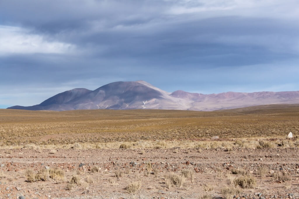 The puna (high desert) near San Antonio de los Cobres. Photo: Nate